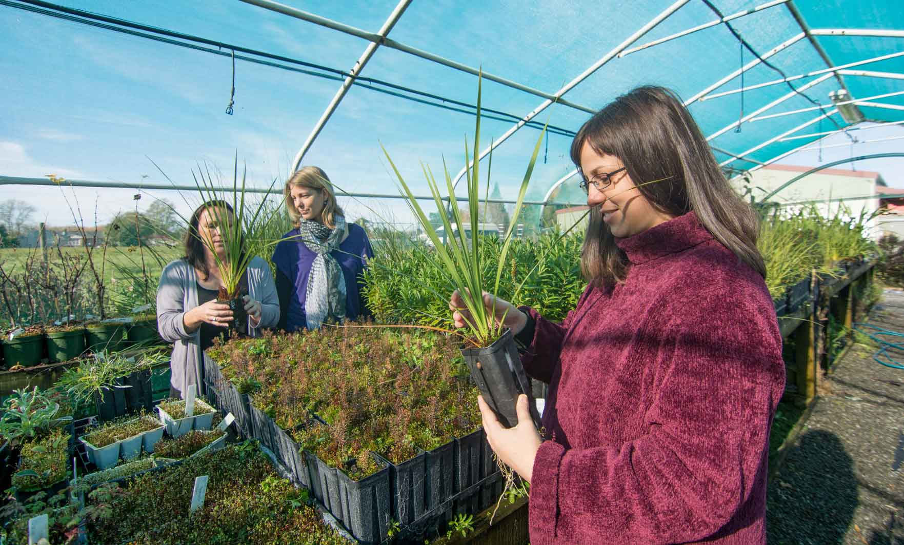 Horticulture NZ Case Study | Fuseworks